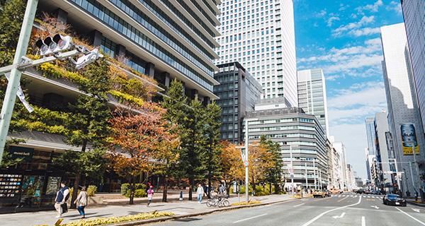 中央区京橋の道路